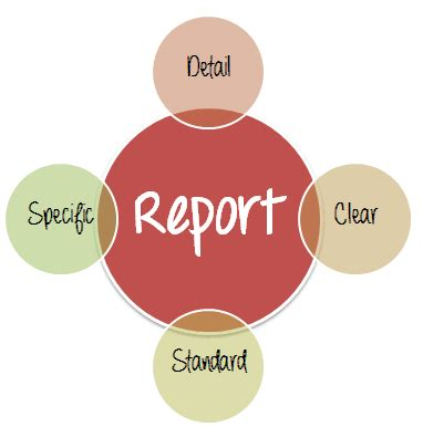 How to Write a Good Bug Report? Tips and Tricks